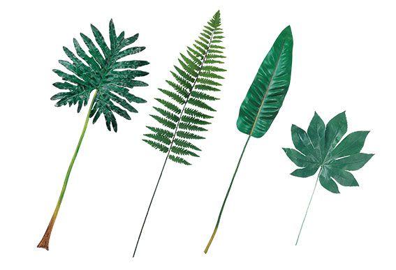 green-leaf