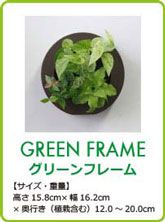 midorie-greenframe02