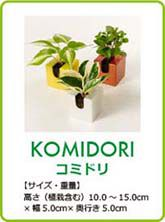 midorie-komidori02