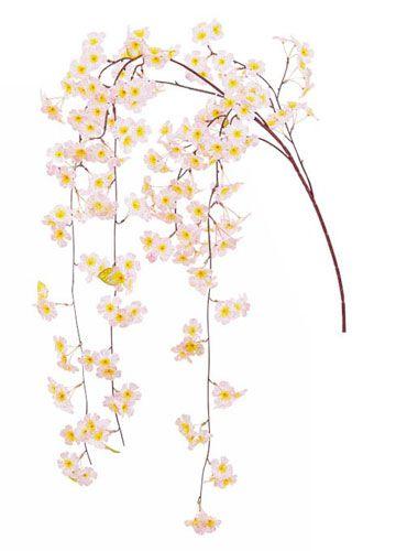 spring00010