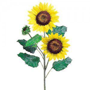summer-flower13